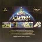 Leoch AGM-1290  12v 100Ah AGM Deep Cycle Battery (agm1290)