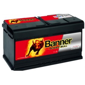 Banner 017 12v 88Ah 680CCA Car Battery (P88 20) (017)