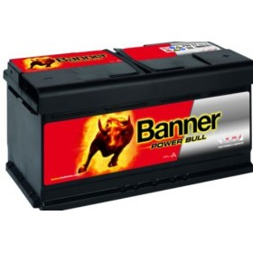 Banner 019 12v 95Ah 760CCA Car Battery (P95 33) (019)